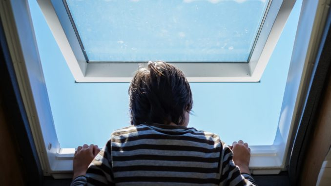 Din fönsterguide